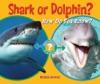 Shark Or Dolphin