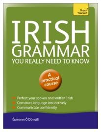 Irish Grammar You Really Need To Know Teach Yourself