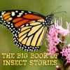 Big Book Of Insect Stories