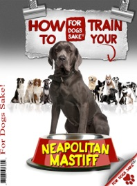 HOW TO TRAIN YOUR NEAPOLITAN MASTIFF