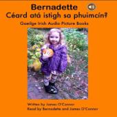 Bernadette Céard atá istigh sa phuimcín?