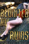Reunited In Ruins Post-apocalyptic Dystopian Erotica