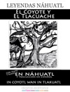 Leyendas Nhuatl El Coyote Y El Tlacuache