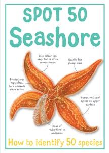 Spot 50 Seashore
