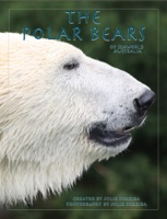 The Polar Bears of Seaworld Australia