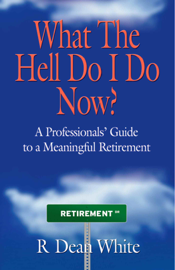 What The Hell Do I Do Now? A Professionals' Guide to a Meaningful Retirement book