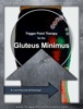 Trigger Point Therapy For The Gluteus Minimus