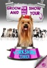 Groom And Show Your Yorkshire Terrier