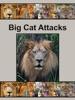 Big Cat Attacks