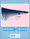 Every Week Is Shark Week