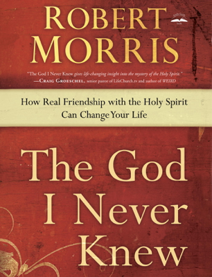Robert Morris - The God I Never Knew book