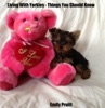 Living With Yorkies: Things You Should Know