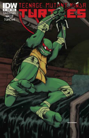 Teenage Mutant Ninja Turtles #1 book
