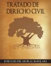 Tratado De Derecho Civil