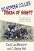 Do Border Collies Dream Of Sheep?
