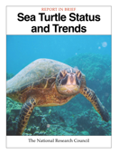 Sea-Turtle Status and Trends