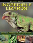 Incredible Lizards