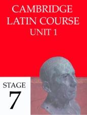 Latin bb vii