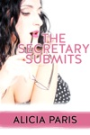 The Secretary Submits MF Office Sex Domination Submission Erotica