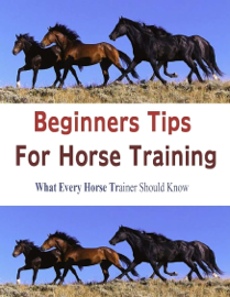 Beginners Tips for Horse Training book