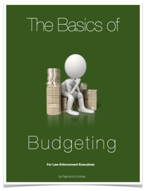 The Basics of Budgeting book