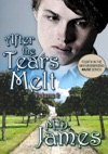 After The Tears Melt - Vol 2 The Muse Series 4