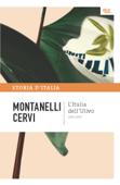 L'Italia dell'Ulivo - 1995-1997
