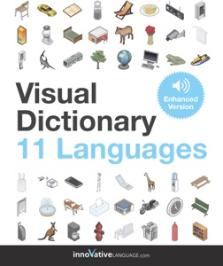 Visual Dictionary - 11 Languages (Enhanced Version) Book Cover