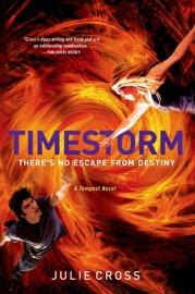 Timestorm PDF Download