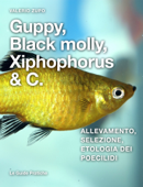 Guppy, Black Molly, Xiphophorus & C.