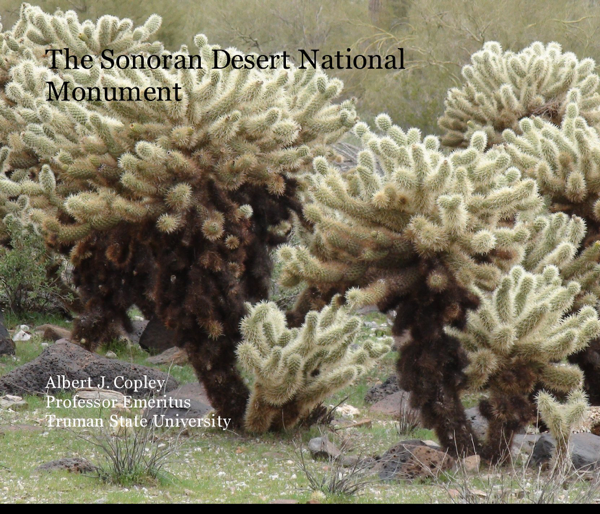The Sonoran Desert National Monument
