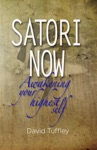 Satori Now Awakening Your Highest Self