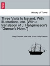 Three Visits To Iceland With Illustrations Etc With A Translation Of J Hallgrimssons Gunnars Holm