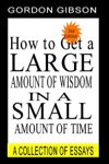 How To Get A Large Amount Of Wisdom In A Small Amount Of Time