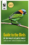 Guide To The Birds Of So Paulos Atlantic Forest