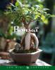 Bonsaï - Collectif