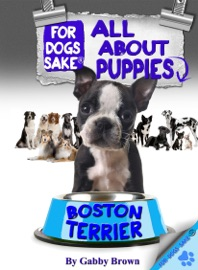 ALL ABOUT BOSTON TERRIER PUPPIES