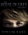 The House Of Grey Volume 3