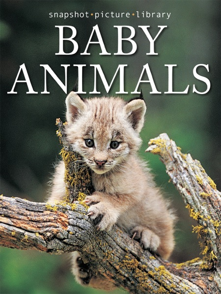 Baby Animals - Snapshot Picture Library book cover