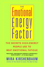 Download The Emotional Energy Factor
