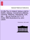 A Little Tour In Ireland Being A Visit To Dublin Galway Connamara Athlone Limerick Killarney Glengarriff Cork Etc  By An Oxonian Ie S R Hole With Illustrations By John Leech