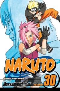 Naruto, Vol. 30 Book Cover