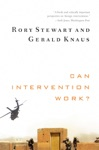 Can Intervention Work Norton Global Ethics Series