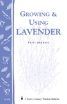 Growing  Using Lavender
