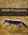 Wildlife Photography From Snapshots To Great Shots