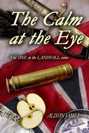 The Calm at the Eye PDF Download