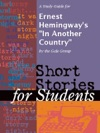 A Study Guide For Ernest Hemingways In Another Country