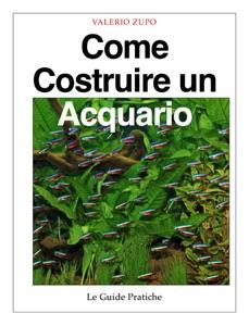 Come costruire un acquario da Valerio Zupo