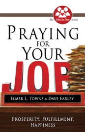 Praying for Your Job PDF Download