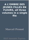 A LOMBRE DES JEUNES FILLES EN FLEURS All Three Volumes In A Single File